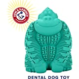 Arm & Hammer Super Treadz Gorilla and Gator Dental Chew Toys for Dogs, Dental Toy for Strong Chewers, Baking Soda Infused