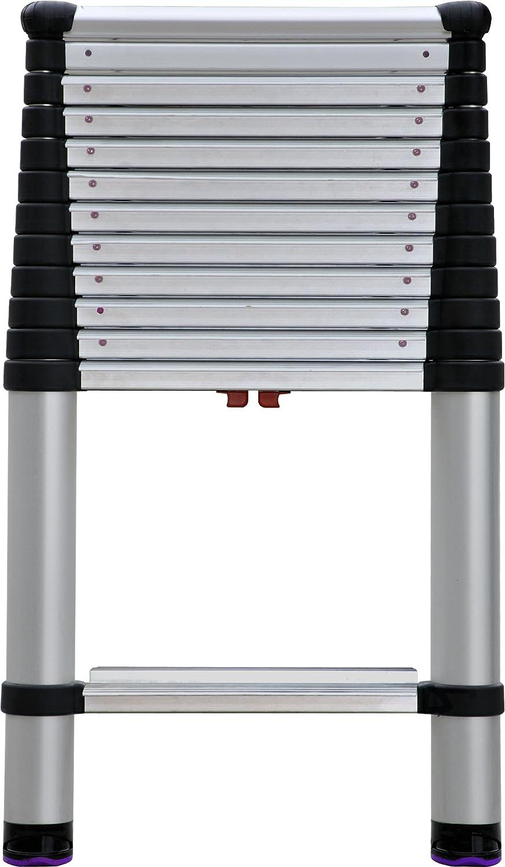 Telesteps 1600EP Telescoping Extension Ladder