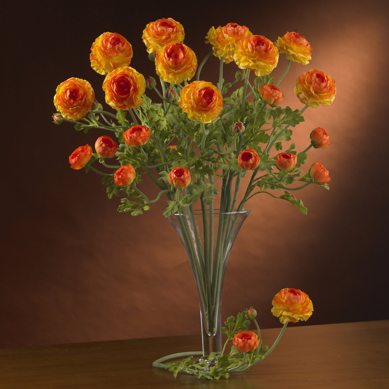 Bolly Bulbs Orange Ranunculus Mandarino 12 Bulbs