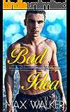 Bad Idea (Stonewall Investigations Miami Book 1)