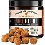Amazon.com : NUSENTIA Probiotic Miracle Dog Probiotics for
