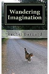 Wandering Imagination Kindle Edition