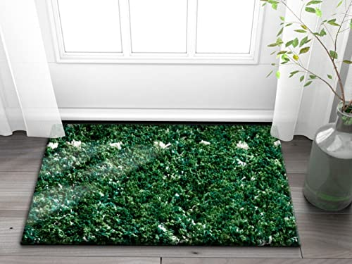 Well Woven Olivia Soft Plush Moroccan Shag 2×3 2 x 3 Accent Doormat Area Rug Green