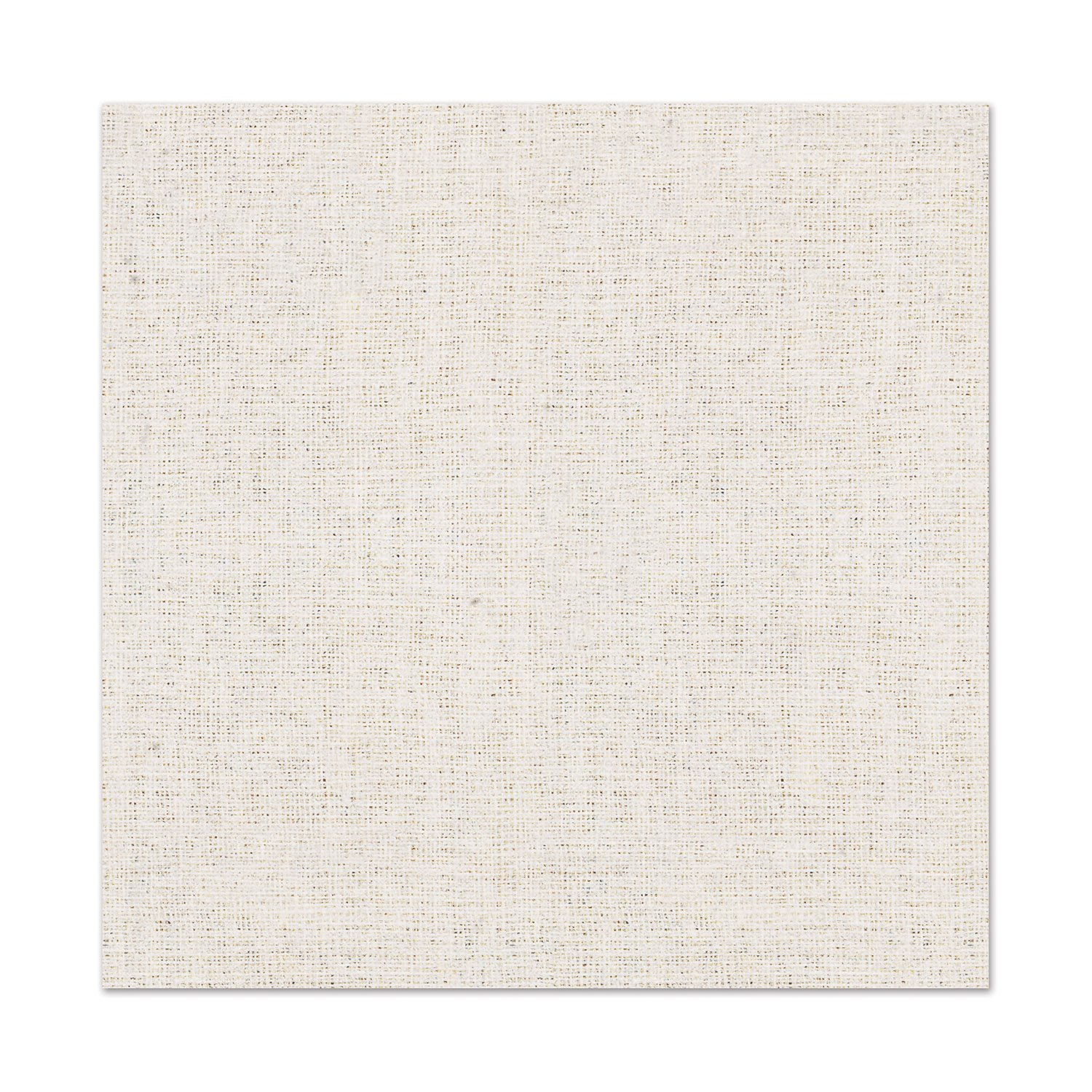 Beistle Club Pack Muslin Paper 2ply Paper Luncheon Napkins, Box Contains 192 Napkins by Beistle