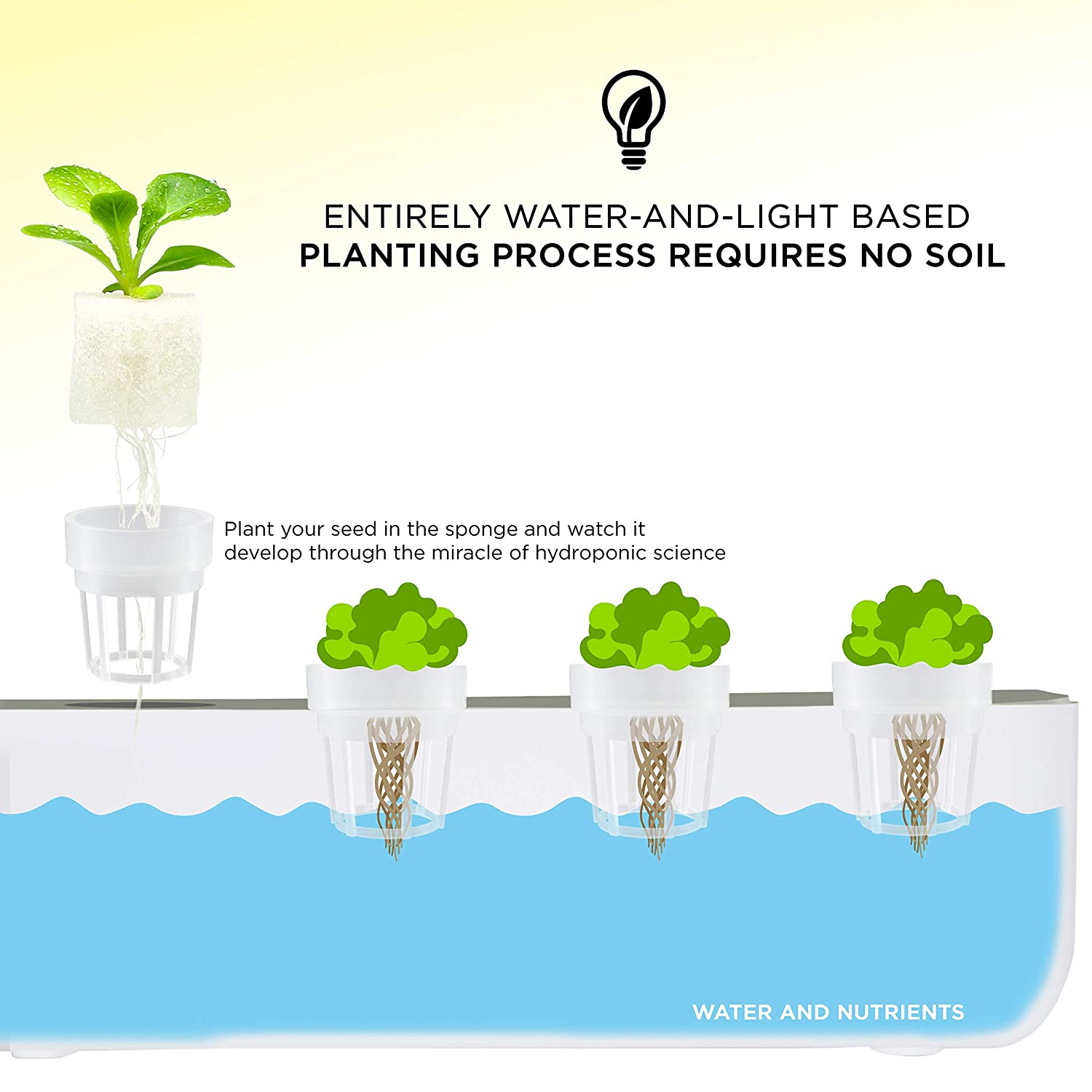 Plants /& Vegetables with LED Light Just Add Seeds! Ivation Herb Indoor Garden Kit Complete Hydroponic Grow System for Herbs Planting Pods /& Hats Nutrients /& Tweezers Seeding Box /& Sponge Cubes