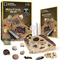 National Geographic Mega Fossil Mine - Dig Up 15 Real Fossils