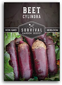 Survival Garden Seeds - Cylindra Beet Seed for Planting - Packet with Instructions to Plant and Grow Your Home Vegetable Garden - Non-GMO Heirloom Variety