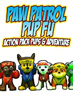 PAW PATROL Pup Fu Action Pack Pups & Adventure