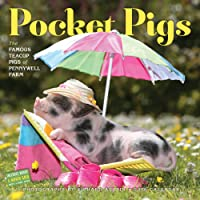 Pocket Pigs Wall Calendar 2016: The Famous Teacup Pigs of Pennywell Farm