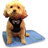 TheGreenPetShop Dog Cooling Mat – Gel Self Cooling Mat for Dogs – The Must-Have Cool Pet Pad for Hot Summer Weather – Patente
