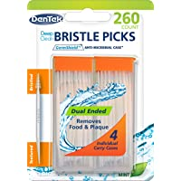 Deals on Dentek Deep Clean Bristle Picks in Mint, 260 Count