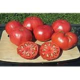 75+ Beefsteak Tomato Seeds- Heirloom Variety Grown in 2019