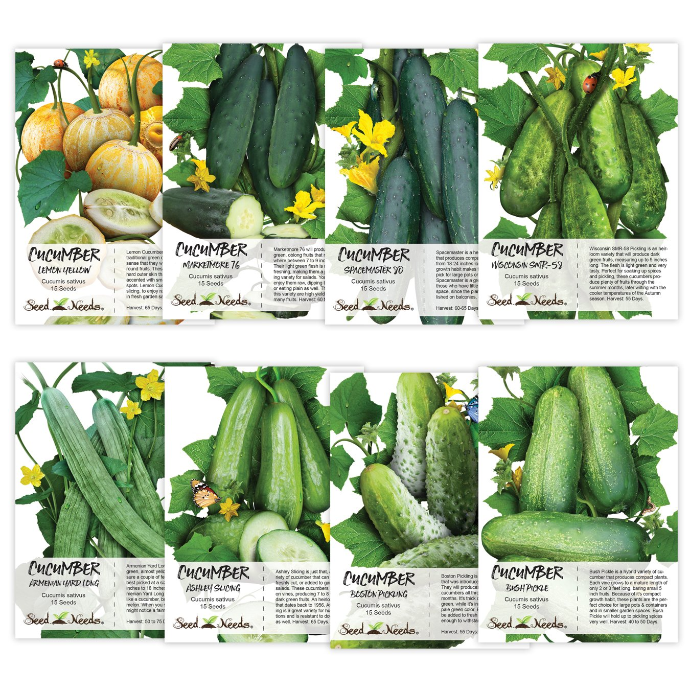 Seed Needs Cucumber Seed Packet Collection (8 Individual Packets of Cucumber Seeds) Non-GMO Seeds