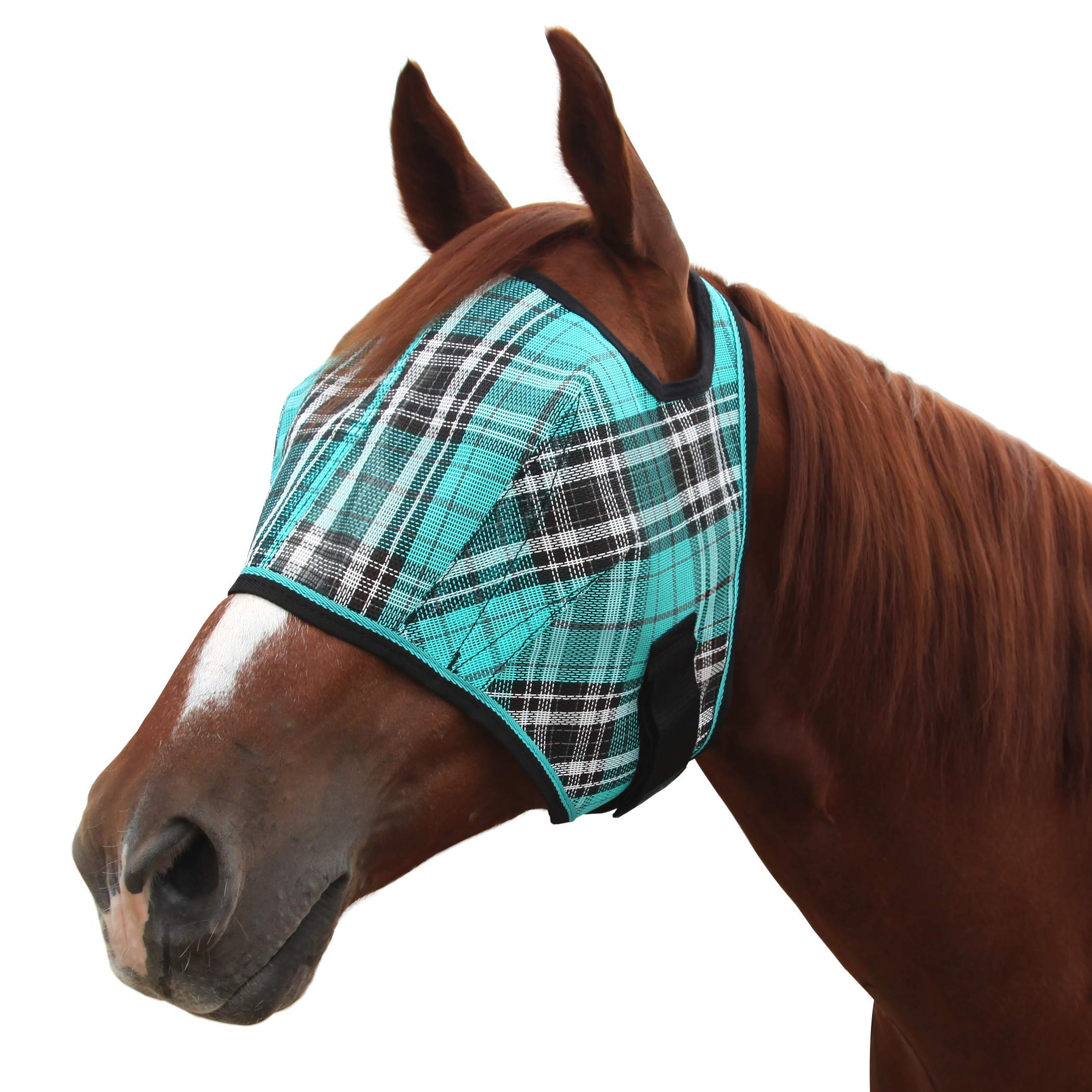 Kensington Fly Mask Web Trim - Protects Horses Face and Eyes From Biting Insects and UV Rays While Allowing Full Visibility - Ears and Forelock Able to Come Through the Mask (Medium, Black Ice)