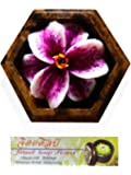 Jittasil Thai Hand-Carved Soap Flower, 4 Inch Scented Soap Carving Gift-Set, Purple Lily In Decorative Hexagonal Pine Wood Case
