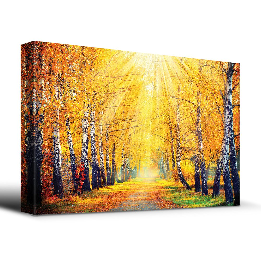 Sunny Autumn Day Trees line a Path - Canvas Art Home Art - 12x18 inches