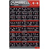 "GRAND BASICS Laminated Large Dumbbell Workout Poster – Perfect Dumbbell Exercise Poster for Home Gym – Large Size 17"" x 27"" E"