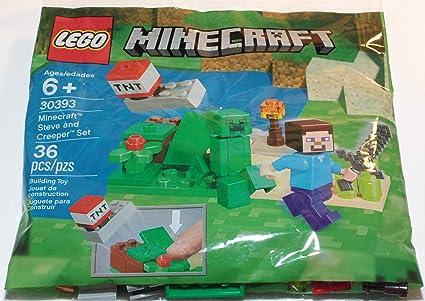 Strange Amazon Com Lego Steve And Creeper Set 30393 Toys Games Funny Birthday Cards Online Eattedamsfinfo