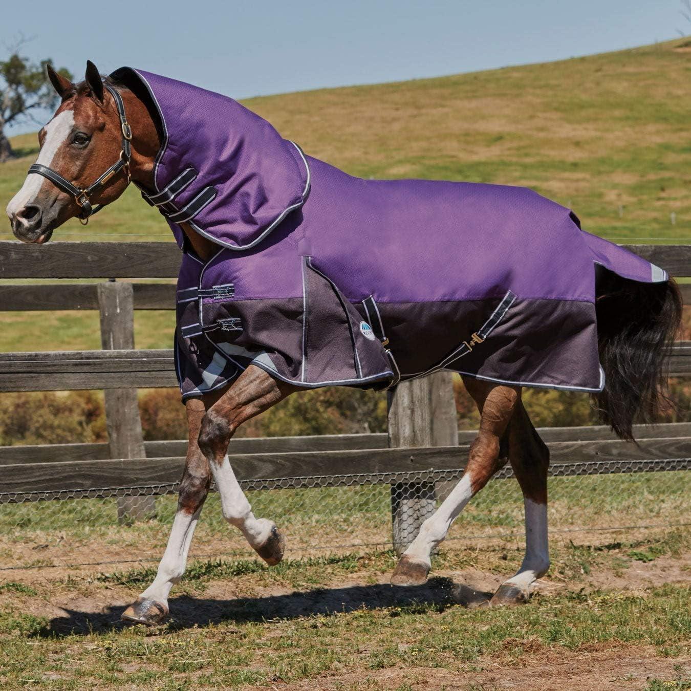 Manta para caballos Weatherbeeta Comfitec Plus Dynamic Detach-A-Neck Medium, Purple & Black, 5' 9