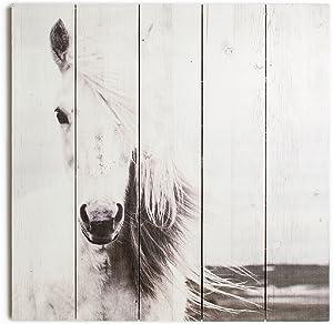 Graham & Brown Horse Wall Art