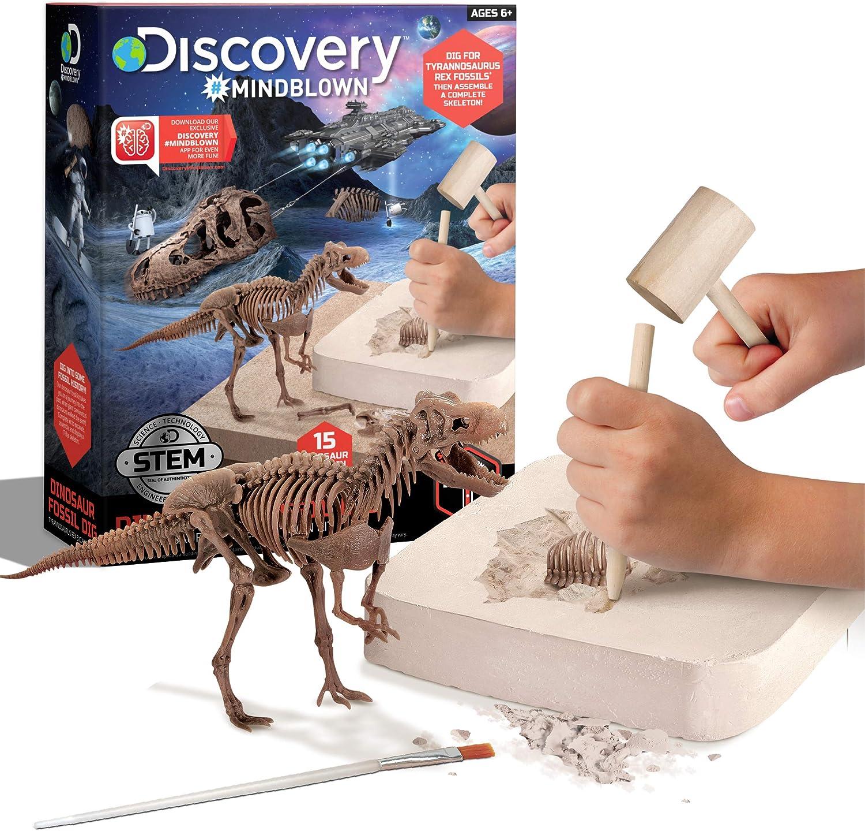 Velociraptors Beige 4 in 1 Jumbo Kit 4 Different Dinosaurs: Diplodocus Tyrannosaurus Triceratops Educational Dinosaur Digging Fossil Skeleton Kit for Kids