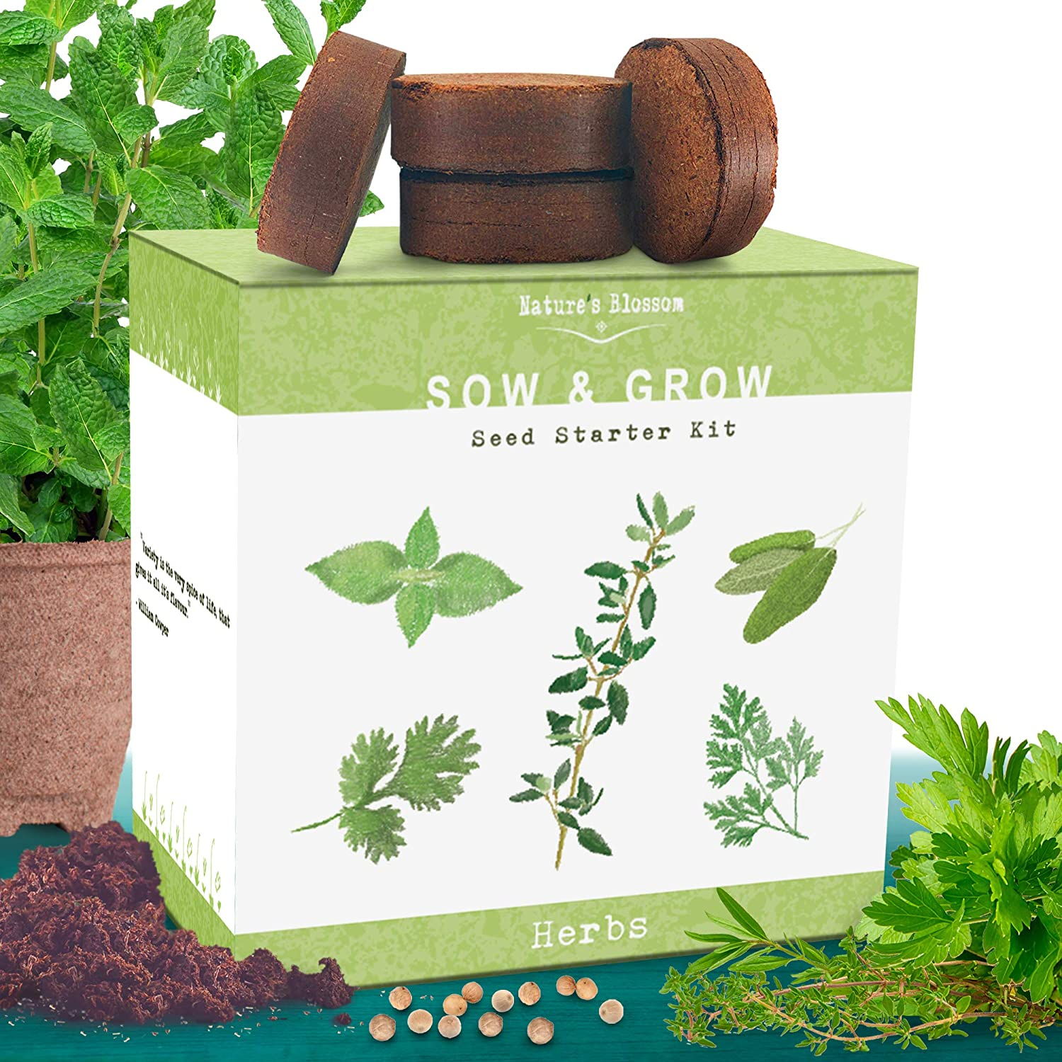 Nature s Blossom Herb Garden Kit. 5 Herbs To Grow From Seed Basil, Cilantro, Sage, Parsley and Thyme Seeds, Ready For Planting. Beginner Gardeners Starter Set For Growing Indoor Plants.