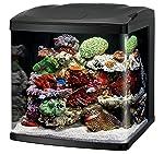 Coralife Biocube size 32 starter kit