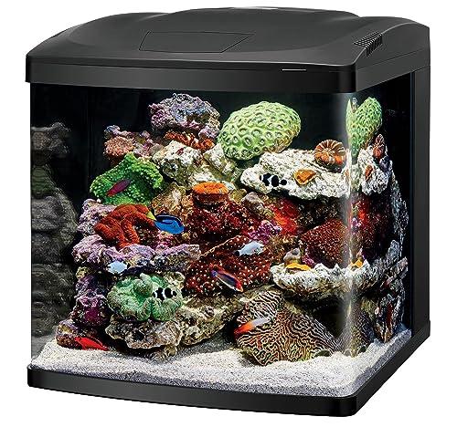 coralife-biocube-size-32