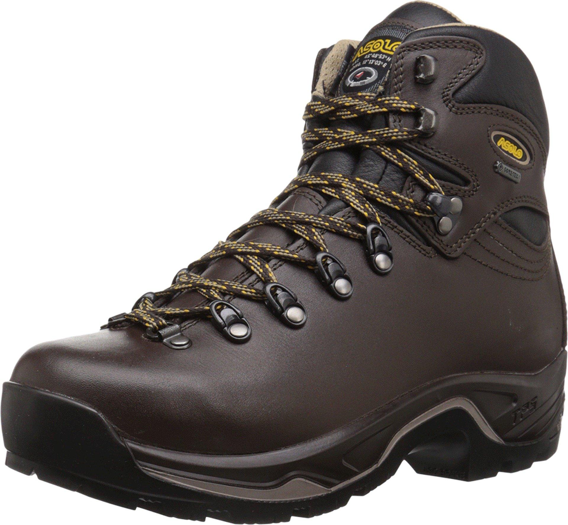 Asolo Men's TPS 520 GV EVO Chestnut Boot 8.5 E - Wide