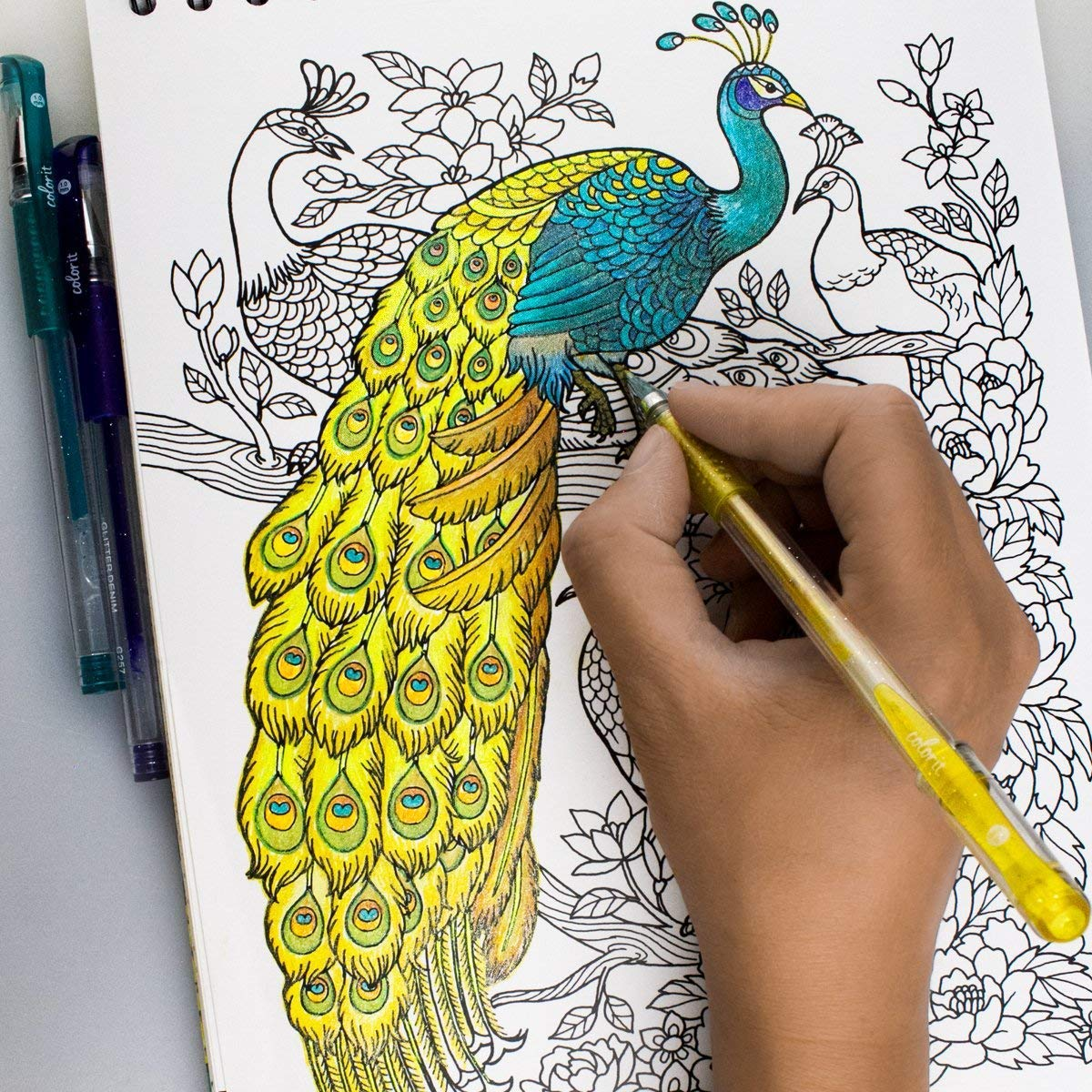 colorit adult coloring book