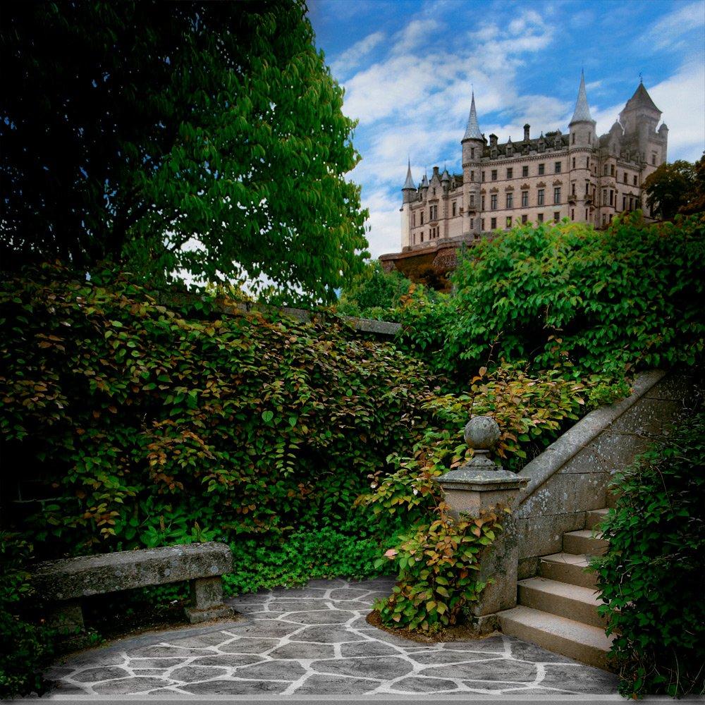 写真バックドロップ – Castle Courtyard – 10 x 10 ft。 – 100 %シームレスなポリエステル   B00NWTRMC0