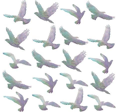 Muttfy - Pegatinas anticolisión para Ventanas y pájaros para Evitar Golpes de pájaros en la Puerta de Cristal de la Ventana (Juego de 12 Siluetas Transparentes): Amazon.es: Hogar