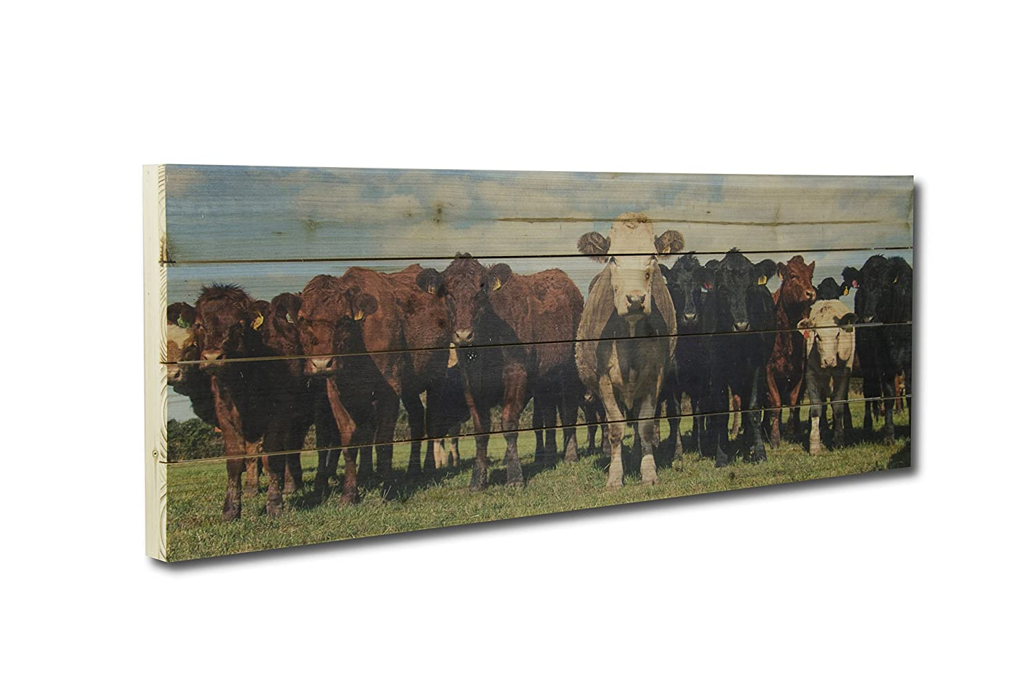 Gallery 57 Cow Herd on Planked Wood