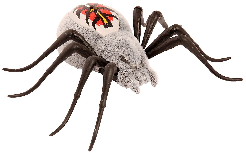 Wild Pets - 33642 - S1 Pack Simple Araignée - Wolfgang BOTI 29014 Peluches et animaux interactifs