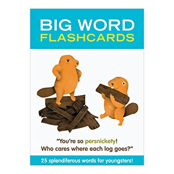 Knock Knock Big Word Flashcards