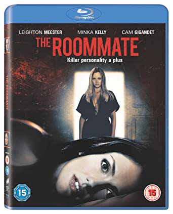 The Roommate 2011 BluRay 480p 300MB Dual Audio ( Hindi – English ) MKV