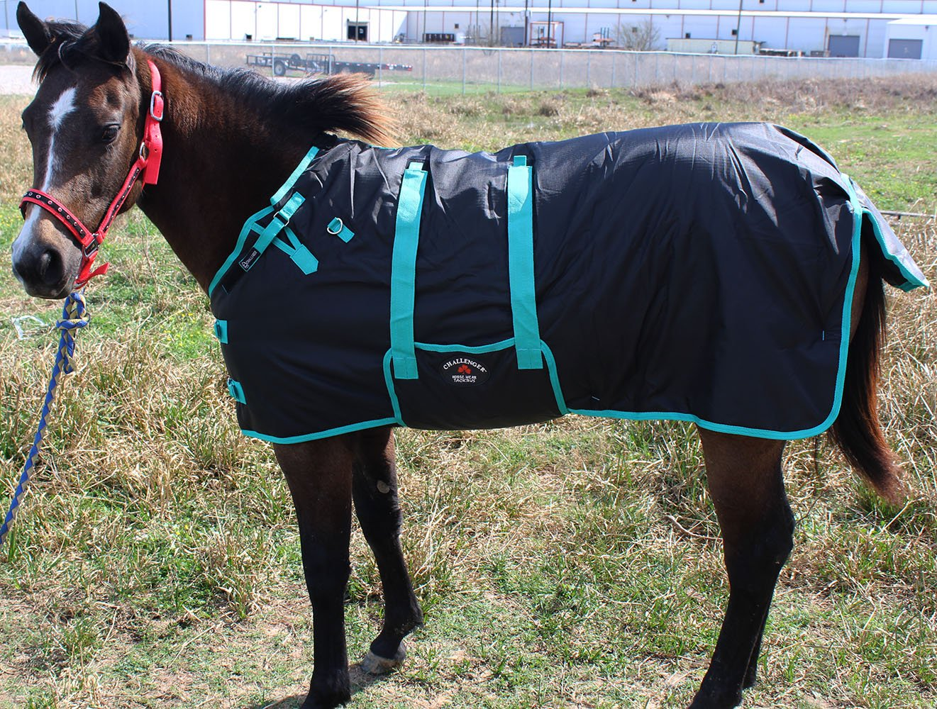60'' 600D Miniature Weanling Donkey Pony Horse Foal Winter Blanket 51945