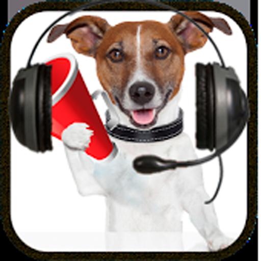 Dog Sounds (Angry Dog Barking)