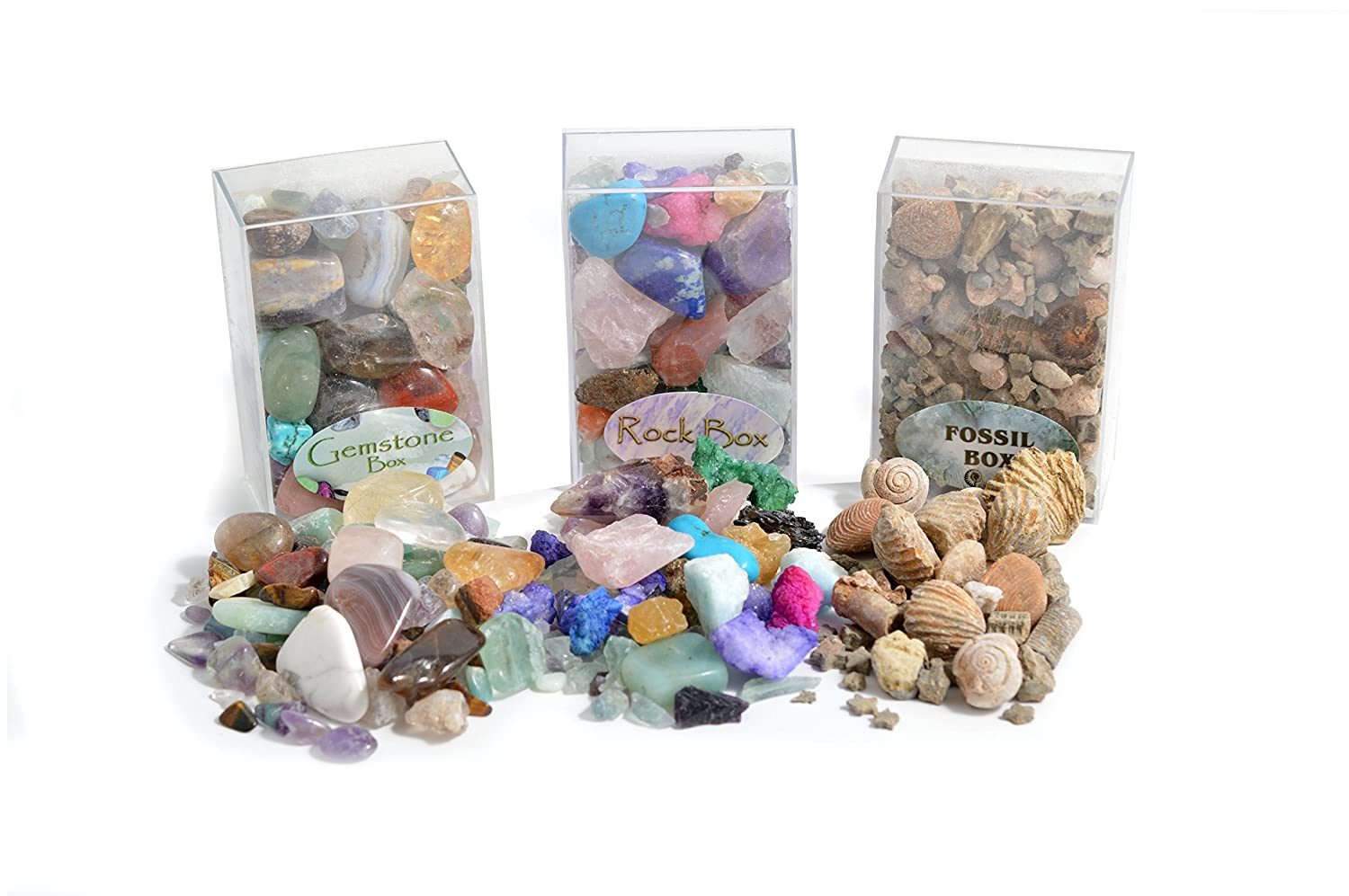 Fossil, Rock and Gemstone Box Collection  Set of 3 Boxes