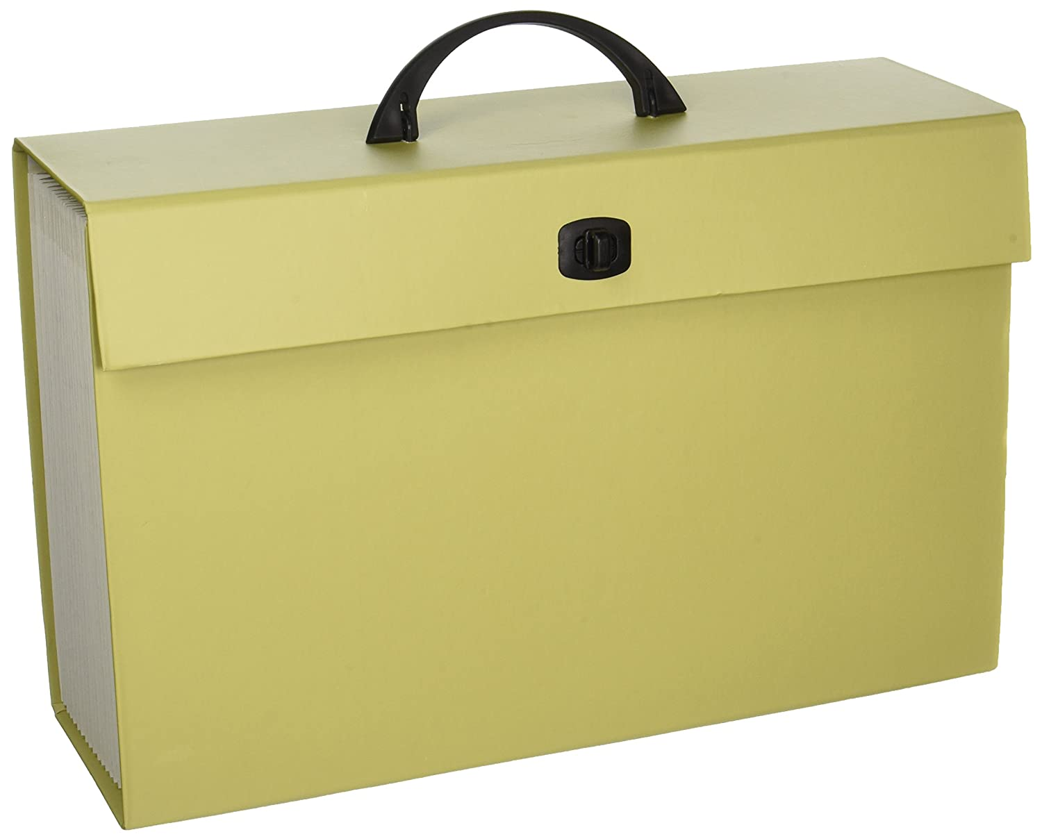 Smead Portable Expanding File Box, 19 Pockets, Blank Tabs, Latch Closure, Legal Size, 1 Count, Color Varies (70806)