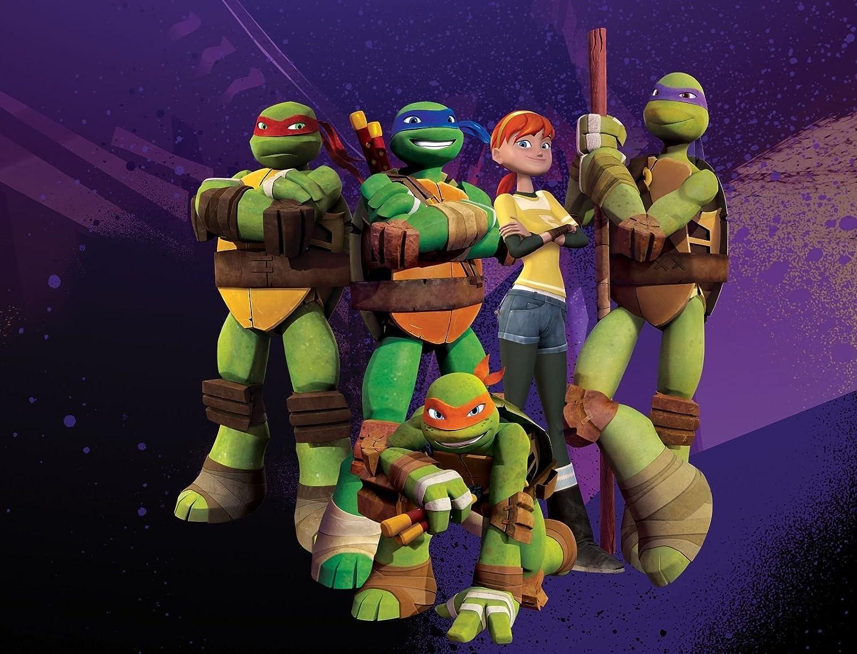sdore de las Tortugas Ninja adolescentes tortugas Ninja ...