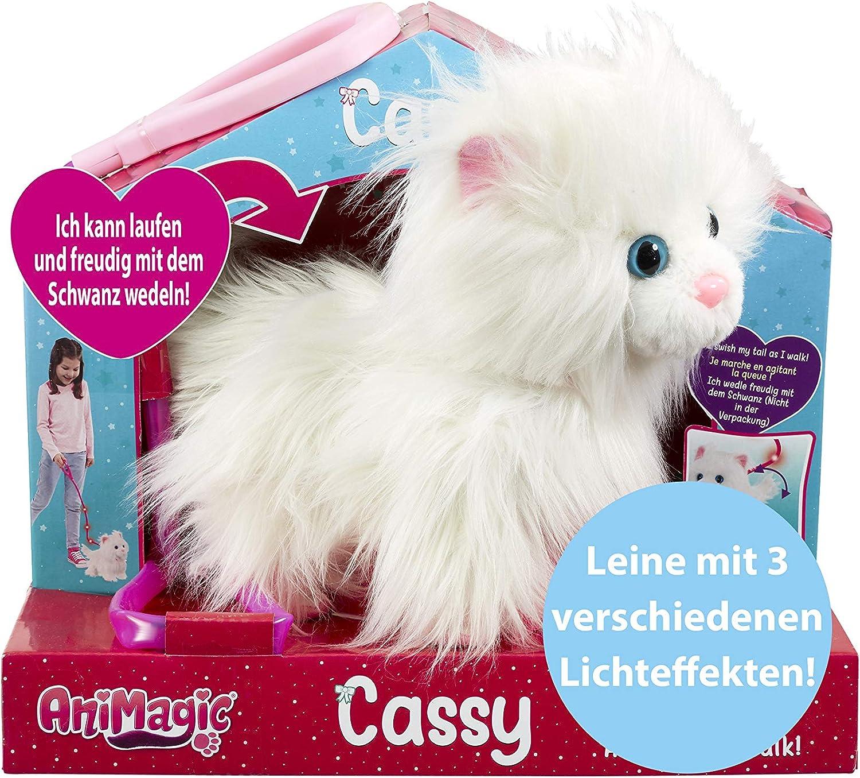 Amazon Com Animagic Pet Cassy Cat Catwalk Toys Games