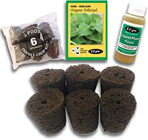 Hydrohort Oregano Seed Pod Kit is Compatible with Click and Grow Smart Garden | Double The Sponges & Double The Seed for 2 Crops | Pelletized Seed for EZ Planting