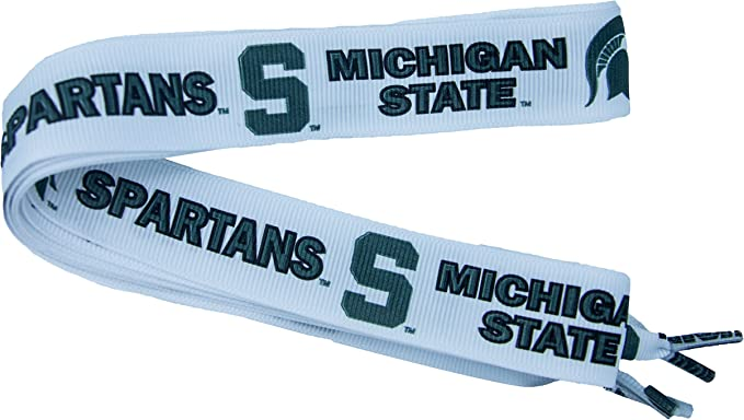 Rico Industries NCAA Michigan State Spartans CD Case One Size Team Color
