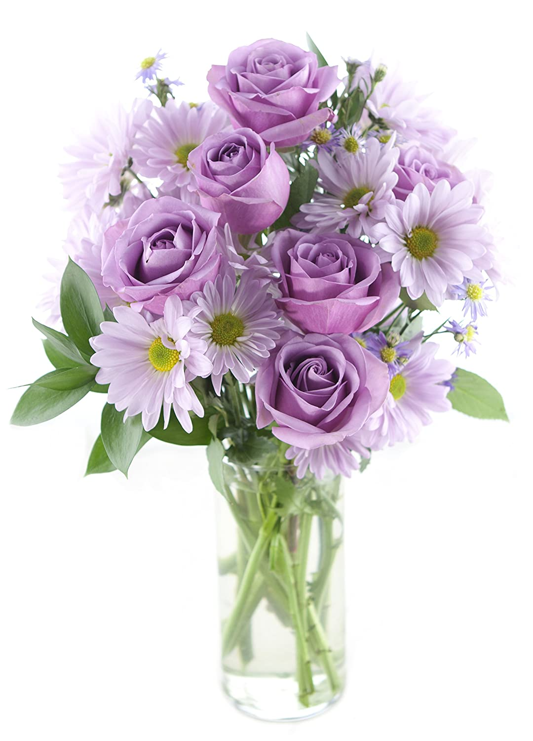 Amazon purple passion bouquet of 6 purple roses 6 purple amazon purple passion bouquet of 6 purple roses 6 purple daisy poms 3 purple asters and lush greens with vase grocery gourmet food izmirmasajfo