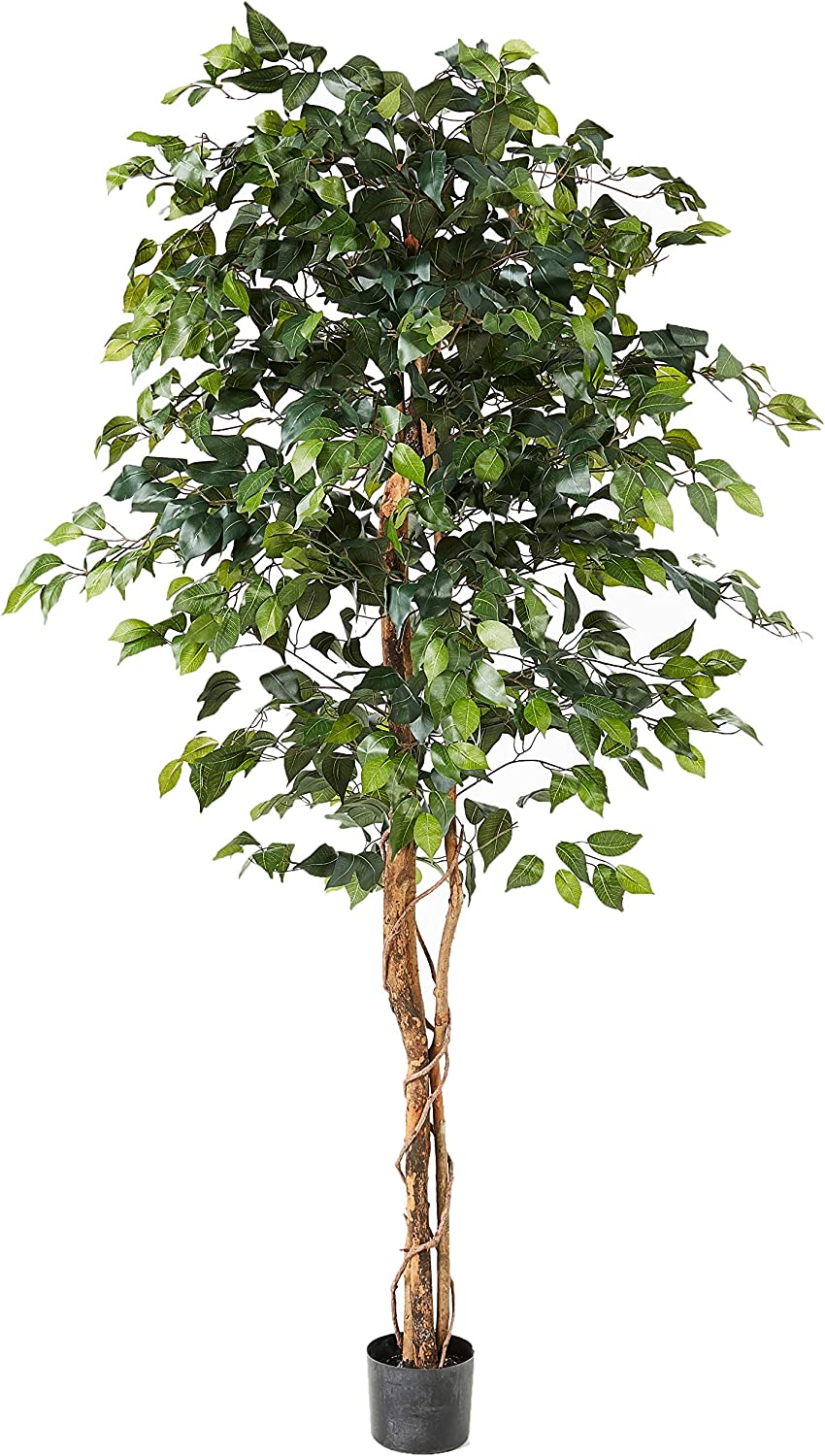 Amazon Com Nearly Natural 6ft Ficus Artificial Trees 72in Green Home Kitchen