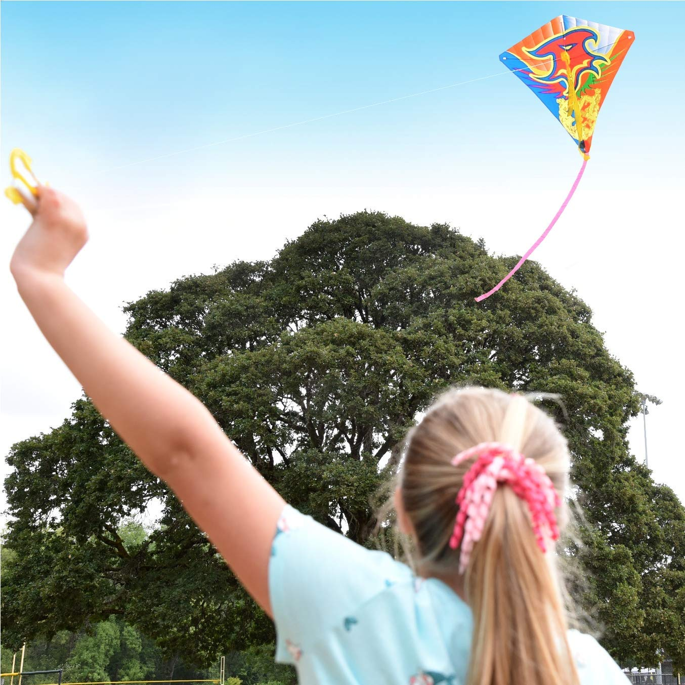 J & J 's toyscapeバルクKite Flying for Kids with 120フィートナイロンコード& Winder (サイズ: 24