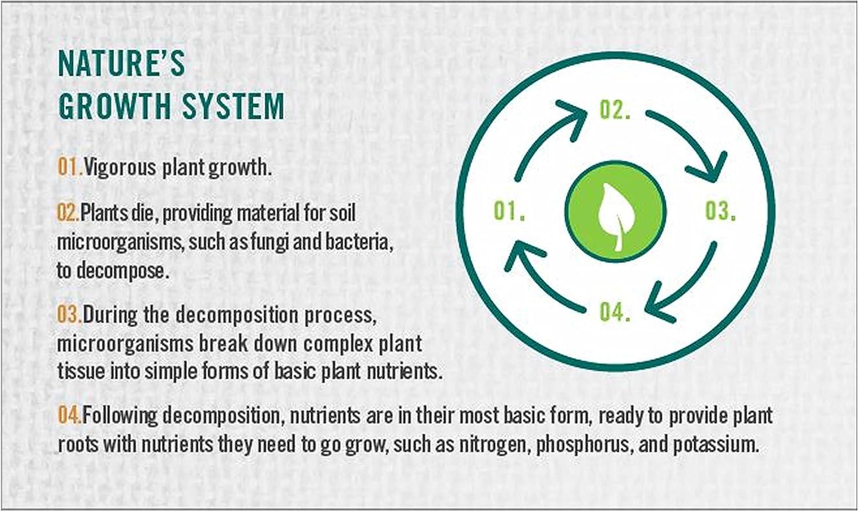 Amazon.com: Safer Ringer Plus-Compost Starter Kit Brand ...