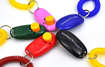 Downtown Pet provide Big Button Pet Training Clicker