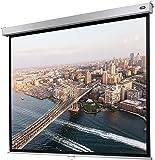 Celexon 1090780 4:3 pantalla de proyección - Pantalla para proyector (Manual, 160 cm, 120 cm, 4:3)